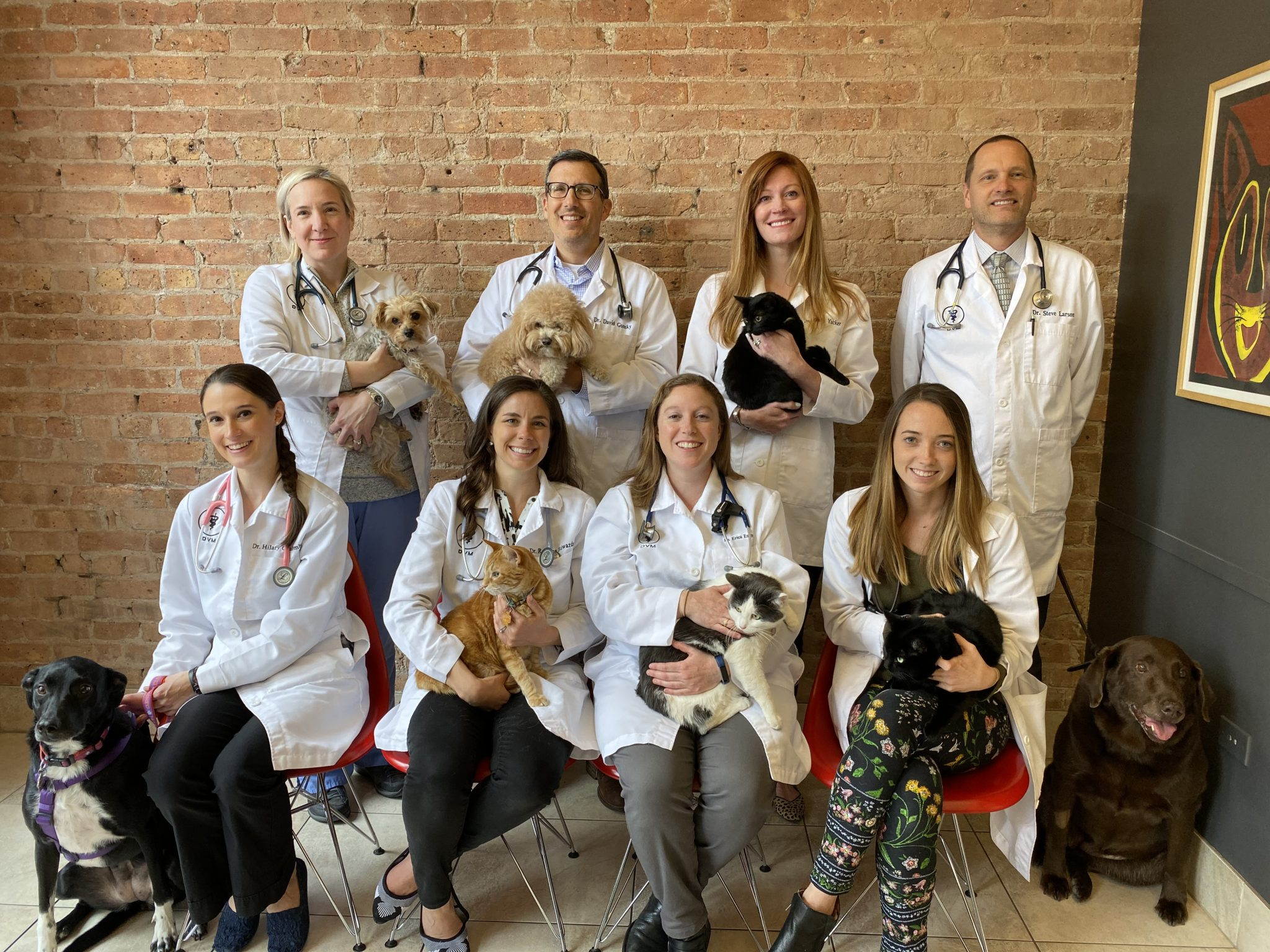 West Loop Veterinary care's veterinarian team holding dogs and cats